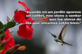 Resultado de imagen de leyendadel colibri