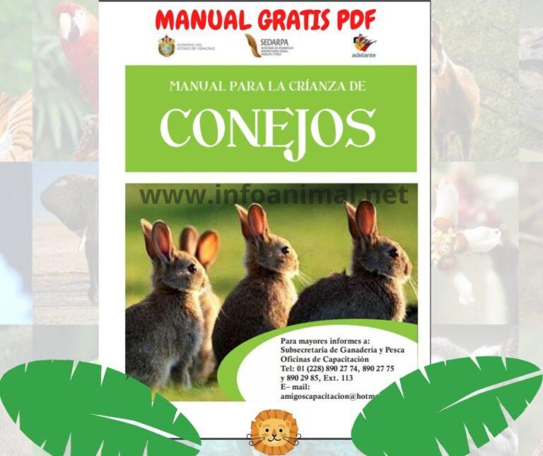 Manual para la crianza de conejos. PDF GRATIS