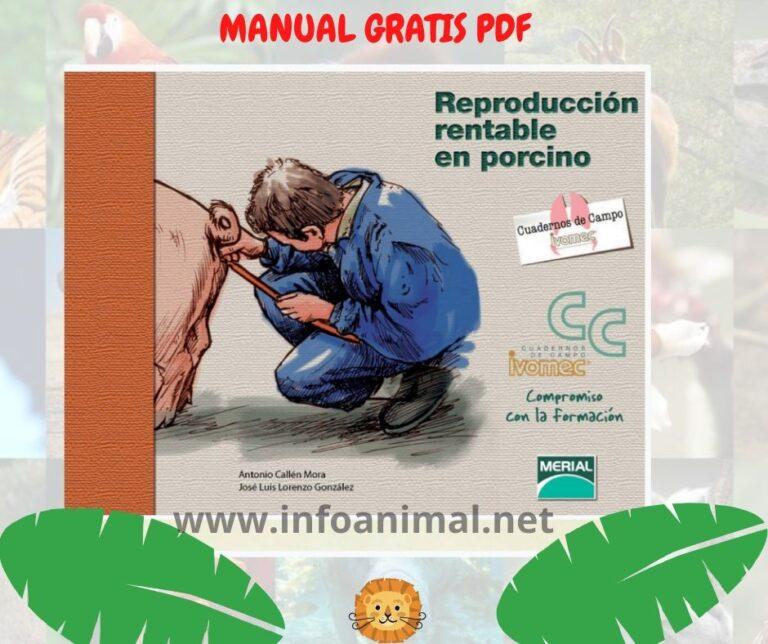 Manual de Reproducción Rentable en porcino